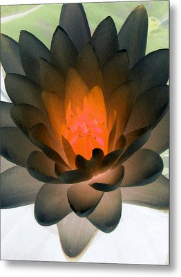 Metal Print featuring the photograph The Water Lilies Collection - Photopower 1036 by Pamela Critchlow
