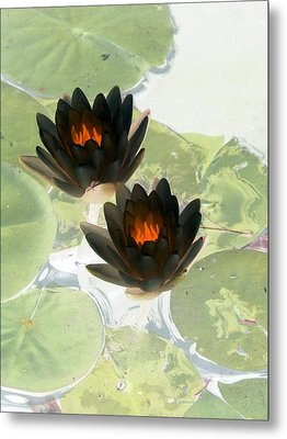 Metal Print featuring the photograph The Water Lilies Collection - Photopower 1040 by Pamela Critchlow