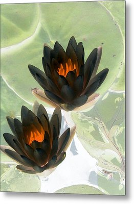 Metal Print featuring the photograph The Water Lilies Collection - Photopower 1046 by Pamela Critchlow