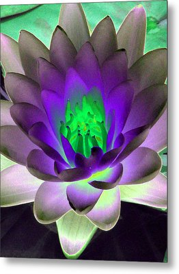 Metal Print featuring the photograph The Water Lilies Collection - Photopower 1115 by Pamela Critchlow