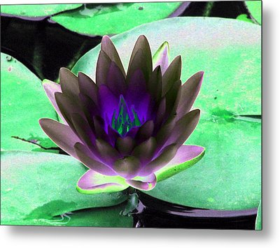 Metal Print featuring the photograph The Water Lilies Collection - Photopower 1116 by Pamela Critchlow