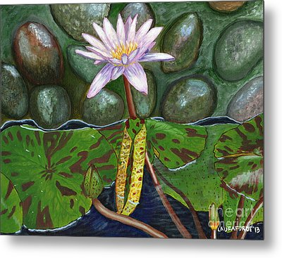 The Waterlily Metal Print by Laura Forde