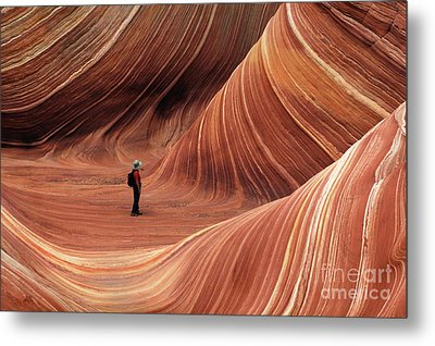 The Wave Seeking Enlightenment Metal Print by Bob Christopher