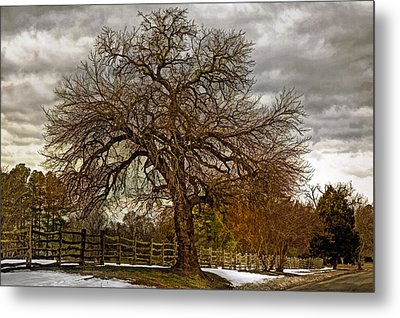 The Welcome Tree Metal Print