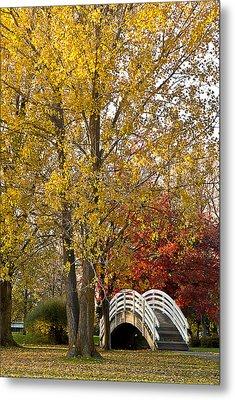 The White Bridge Metal Print by Celso Bressan