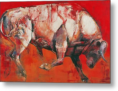The White Bull Metal Print by Mark Adlington