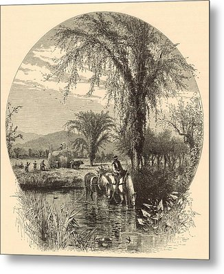 The White Mountains From The Conway Meadows 1872 Engraving Metal Print by Antique Engravings