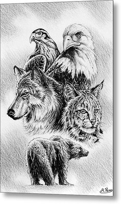 The Wildlife Collection 1 Metal Print by Andrew Read