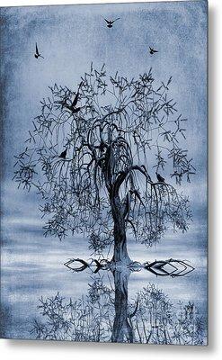 The Wishing Tree Cyanotype Metal Print by John Edwards