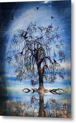 The Wishing Tree Metal Print by John Edwards