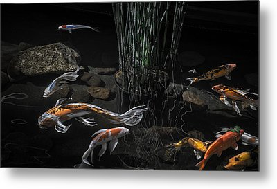 Metal Print featuring the photograph The Zen Of Koi by Glenn DiPaola