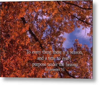 There Is A Season Ecclesiastes Metal Print by Denise Beverly