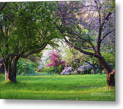 There Is No Place Like Spring Metal Print by Judy Via-Wolff