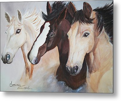 They Run Wild Metal Print by Donna Steward