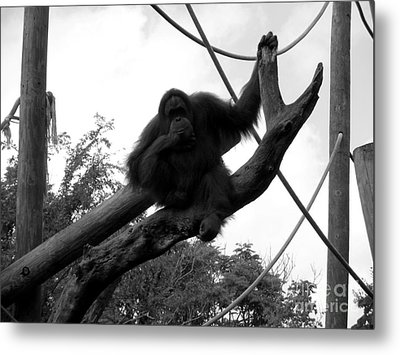 Metal Print featuring the photograph Thinking Of You Black And White by Joseph Baril