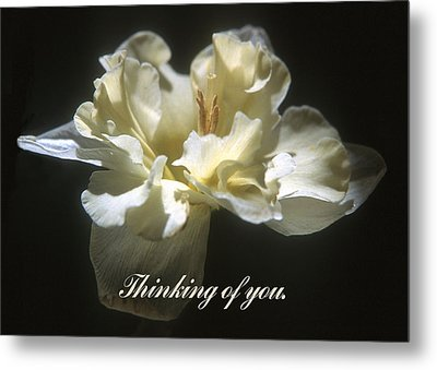 Thinking Of You. Metal Print by Harold E McCray
