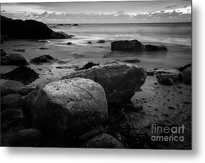 Thinking Spot Metal Print by Sue OConnor