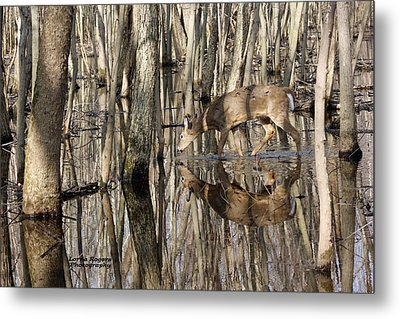 Thirsty Pause Metal Print