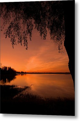 This Is A New Day ... Metal Print by Juergen Weiss