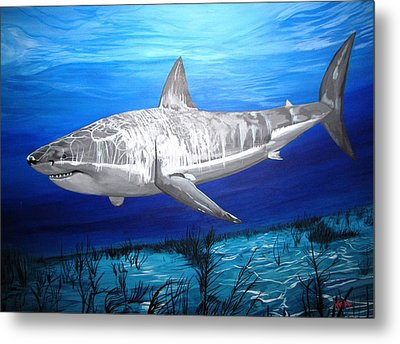 This Is A Shark Metal Print by Kevin F Heuman