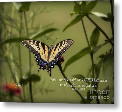 This Is The Day Metal Print by Cris Hayes