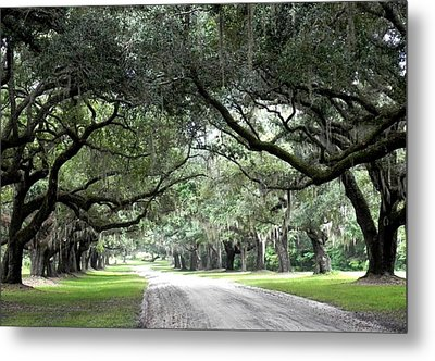 This Is The South Metal Print by Patricia Greer