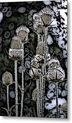 Metal Print featuring the digital art Thistle  by David Lane