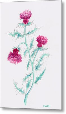 Metal Print featuring the painting Thistle by Rebecca Davis