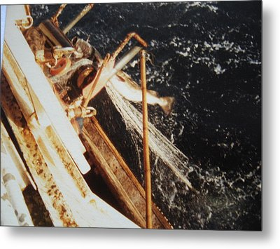 Thoska. Cod Fish. Metal Print by Godfrey McDonnell