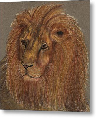 Metal Print featuring the drawing Thoughtful Lion 2 by Stephanie Grant