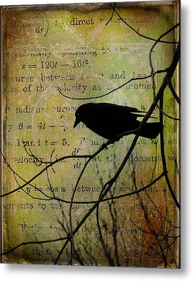 Thoughts Of Crow Metal Print by Gothicrow Images