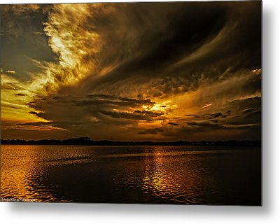 Metal Print featuring the photograph Threatening by Linda Karlin