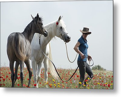 Three At The Poppies' Field... 1 Metal Print by Dubi Roman