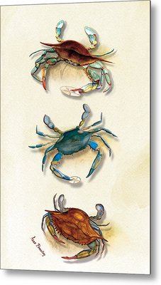 Three Blue Crabs Metal Print by Anne Beverley-Stamps