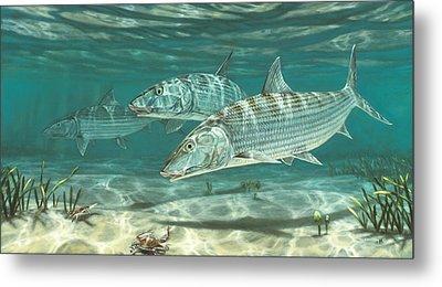 Three Bonefish And Crabs Metal Print by Don  Ray