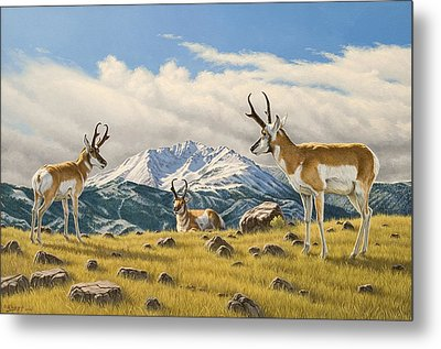 Three Bucks On The Ridge Metal Print by Paul Krapf