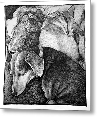 Three Dog Night Metal Print by Lorraine Zaloom