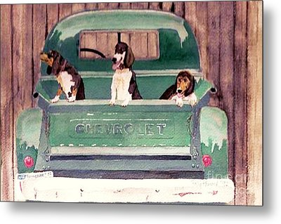 Three Dogs And A Truck Metal Print by Polly Peacock