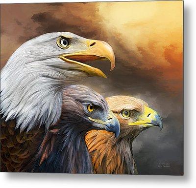 Three Eagles Metal Print by Carol Cavalaris