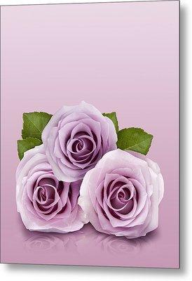 Three Lilac Roses Metal Print