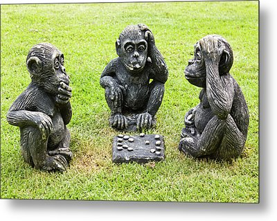 Three Monkeys Playing Checkers Metal Print