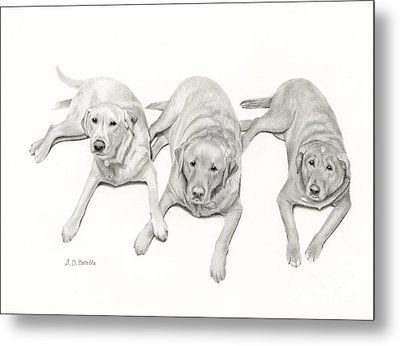 Three Of A Kind Metal Print