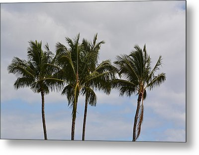 Three Palm Trees Metal Print