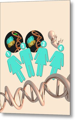 Three Parent Ivf Metal Print by Victor Habbick Visions
