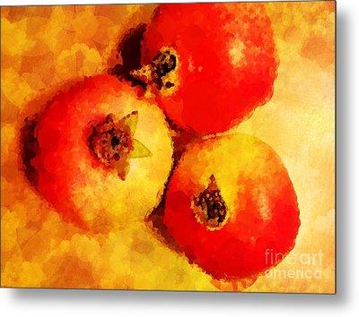 Three Pomegranates Metal Print by Mary Machare