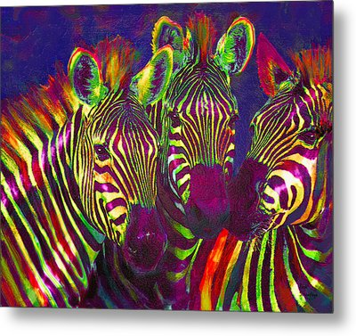 Three Rainbow Zebras Metal Print by Jane Schnetlage