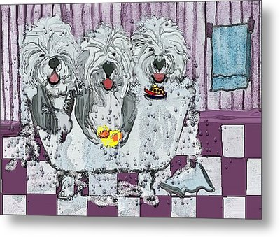 Three Sheepdogs In A Tub Metal Print