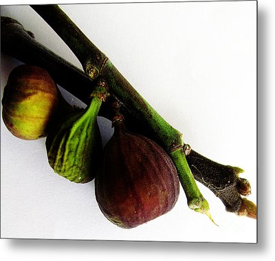 Three Stages Till Fully Ripe Metal Print by Tina M Wenger