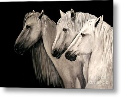 Three White Horses Metal Print by Nancy Bradley