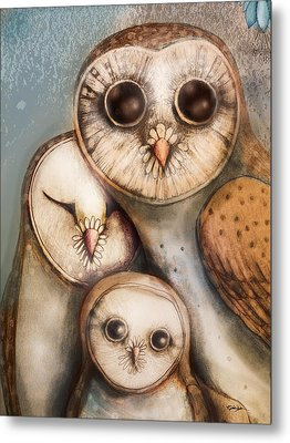 Three Wise Owls Metal Print by Karin Taylor